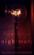 A Beautiful Nightmare Front Cover