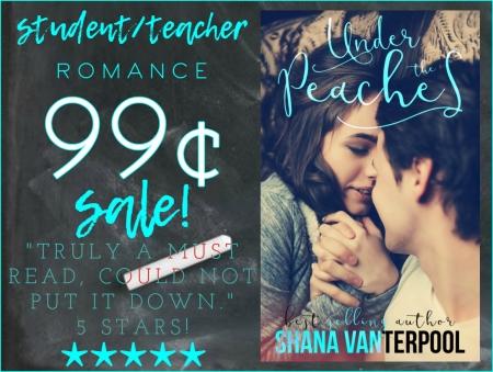 99cent sale image